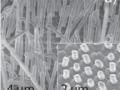 Perovskite nanowire array prepared by extrusion through InRedox AAO, Nano Lett., 2017, 17 (11), pp 6557–6563