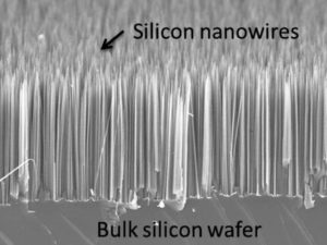 Arrays of Si nanowires on Si wafer
