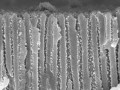 ZnO ALD inside 100 nm pores of AAO